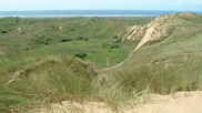 Horsebreakers Slack is located to the south-west of Flagpole Dune.  Dune slacks are wet areas between the hollows and valleys where the water table is much nearer the surface and are one of the richest areas of the dunes in terms of vegetation.  Courtesy John and Mary Breeds.