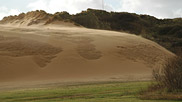 Flagpole Dune.  This impressive natural landmark is thought to shift around 2 – 3m east per year, covering the grassland in the foreground as it moves.  Courtesy John and Mary Breeds.