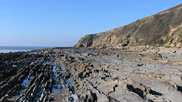 This image shows the wave-cut platforms at the base of Saunton Cliffs.  Courtesy of Dave Edgcombe.